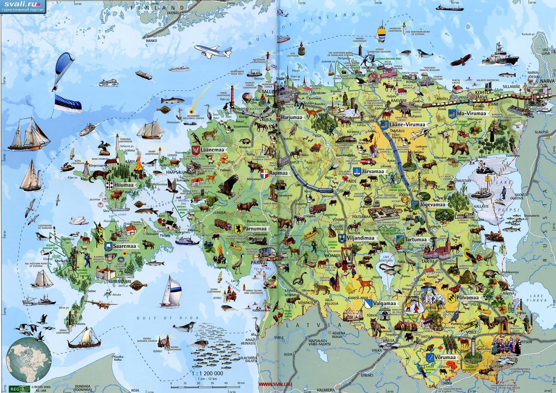 Bolshaya Podrobnaya Turisticheskaya Karta Estonii Vse Turisticheskie